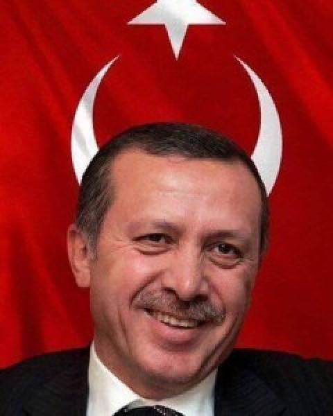 Dr. Cherif AMIR analyzes the evolving Turkish ground invasion of Northern Syria on NILE TV international.